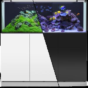 Pesci acquari piante online e a messina prodotti e for Acquario marino 300 litri prezzo